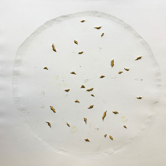 BRONWYN LACE, Stitched Pupa 2016, Embossed Unwanted Lepidoptera Specimens Collected from a Retired Entomologist, Piercings and Gold Coloured Thread on Cotton Rag Paper